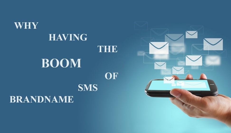 hiện tượng sms brandname 1